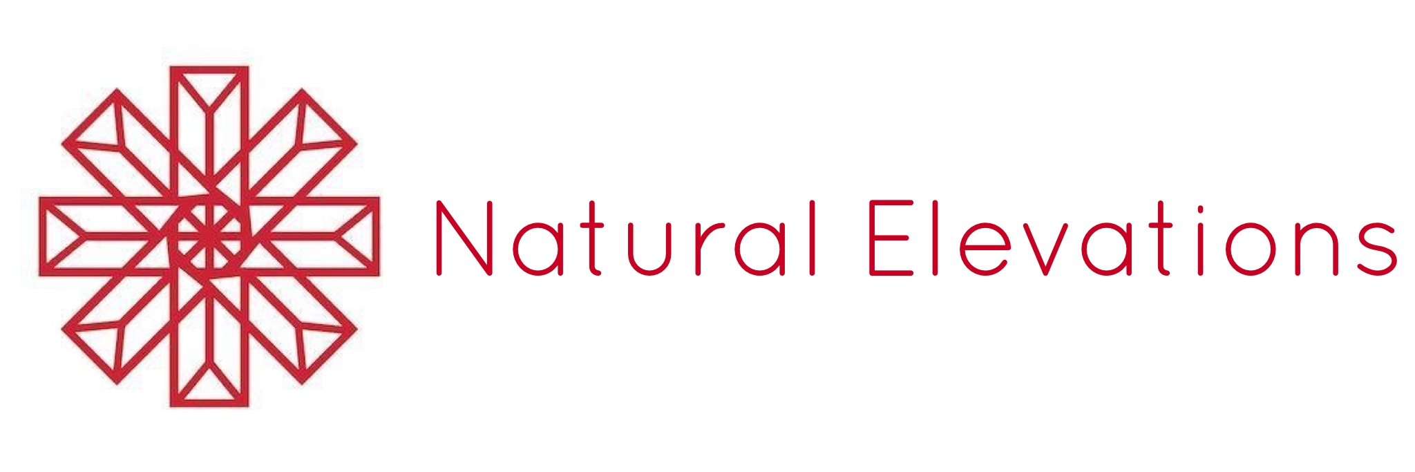 NATURAL ELEVATIONS INC